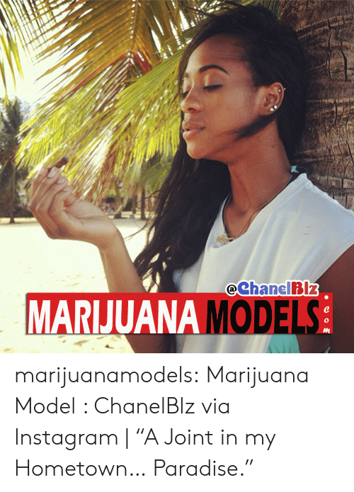 "Instagram, Paradise, and Tumblr: eChanelBIz  MARIJUANA MODEL  0  0 marijuanamodels:  Marijuana Model : ChanelBlz via Instagram | ""A Joint in my Hometown… Paradise."""