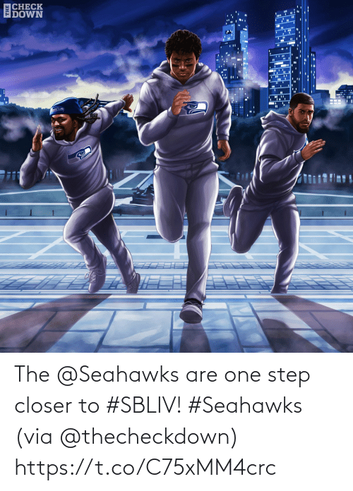 Seahawks: ECHECK  IDOWN  %3D The @Seahawks are one step closer to #SBLIV! #Seahawks  (via @thecheckdown) https://t.co/C75xMM4crc
