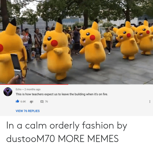 orderly: Echo 2 months ago  This is how teachers expect us to leave the building when it's on fire.  6.6K  76  VIEW 76 REPLIES In a calm orderly fashion by dustooM70 MORE MEMES