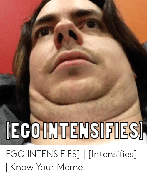 🦅 25+ Best Memes About Intensifies Know Your | Intensifies
