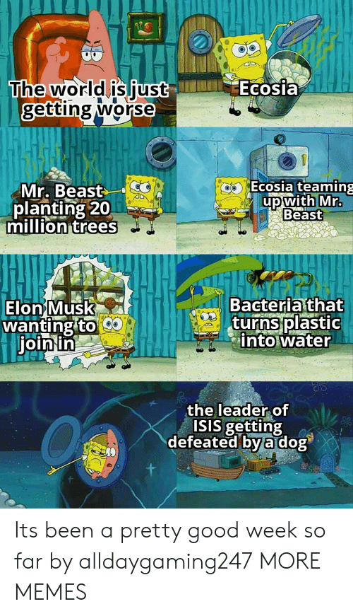 defeated: Ecosia  The world is just  getting worse  Ecosia teaming  Mr. Beast  planting 20  million trees  up with Mr.  Beast  Bacteria that  turns plastic  into water  Elon Musk  wanting to  join in  the leader of  ISIS getting  defeated by a dog Its been a pretty good week so far by alldaygaming247 MORE MEMES