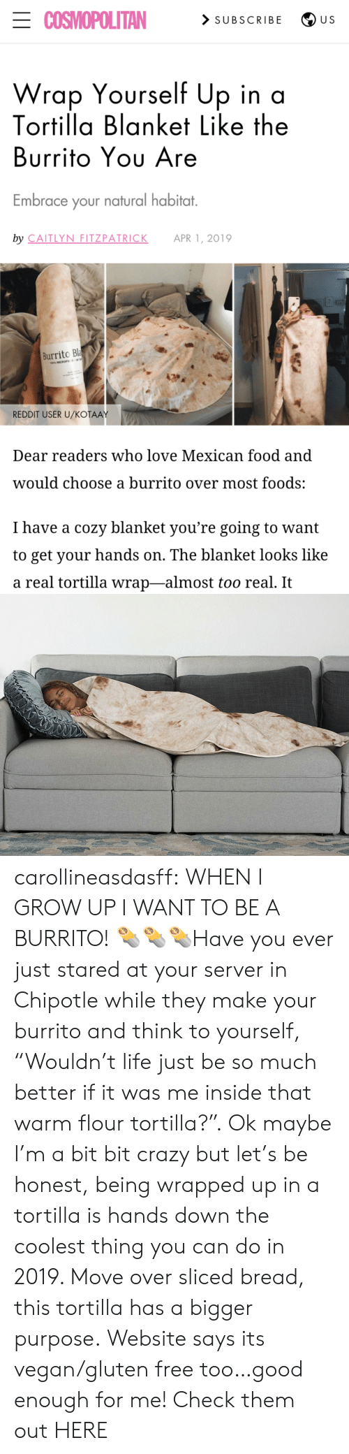"Chipotle, Crazy, and Food: ECOSMOPOLITAN  > SUBSCRIBE  U S  Wrap Yourself Up in a  Tortilla Blanket Like the  Burrito Yου Are  Embrace your natural habitat.  by CAITLYN FITZPATRICK  APR 1, 2019  Burrito Bla  100% MICROFE  REDDIT USER U/KOŤAAY  Dear readers who love Mexican food and  would choose a burrito over most foods:  I have a cozy blanket you're going to want  to get your hands on. The blanket looks like  a real tortilla wrap-almost too real. It carollineasdasff:  WHEN I GROW UP I WANT TO BE A BURRITO! 🌯🌯🌯Have you ever just stared at your server in Chipotle while they make your burrito and think to yourself, ""Wouldn't life just be so much better if it was me inside that warm flour tortilla?"". Ok maybe I'm a bit bit crazy but let's be honest, being wrapped up in a tortilla is hands down the coolest thing you can do in 2019. Move over sliced bread, this tortilla has a bigger purpose. Website says its vegan/gluten free too…good enough for me! Check them out HERE"