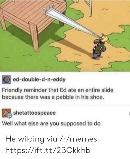 double d: ed-double-d-n-eddy  Friendly reminder that Ed ate an entire slide  because there was a pebble in his shoe.  shetattoospeace  Well what else are you supposed to do He wilding via /r/memes https://ift.tt/2BOkkhb