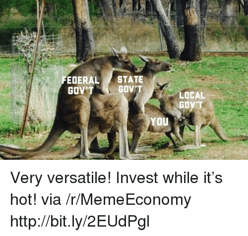 Http, Invest, and Local: EDERAL STATE  GOV  GOVIT  LOCAL  GOV'T  YOU Very versatile! Invest while it's hot! via /r/MemeEconomy http://bit.ly/2EUdPgl