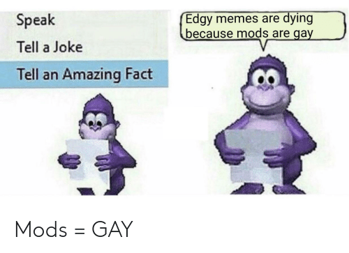 dying: Edgy memes are dying  because mods are gay  Speak  Tell a Joke  Tell an Amazing Fact Mods = GAY