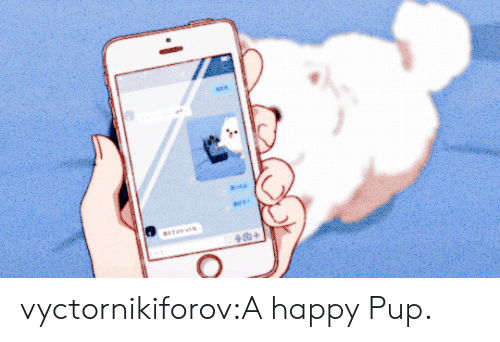 Tumblr, Blog, and Com: ees  sTA  + vyctornikiforov:A happy Pup.
