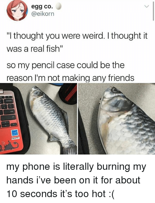 """Friends, Ironic, and Phone: egg co.  @eikorn  """"I thought you were weird. I thought it  was a real fish""""  so my pencil case could be the  reason l'm not making any friends  Ham my phone is literally burning my hands i've been on it for about 10 seconds it's too hot :("""