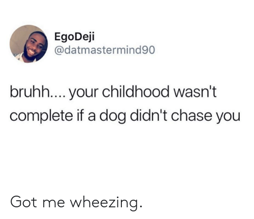 Dank, Chase, and 🤖: EgoDeji  @datmastermind90  bruhh.... your childhood wasn't  complete if a dog didn't chase you Got me wheezing.