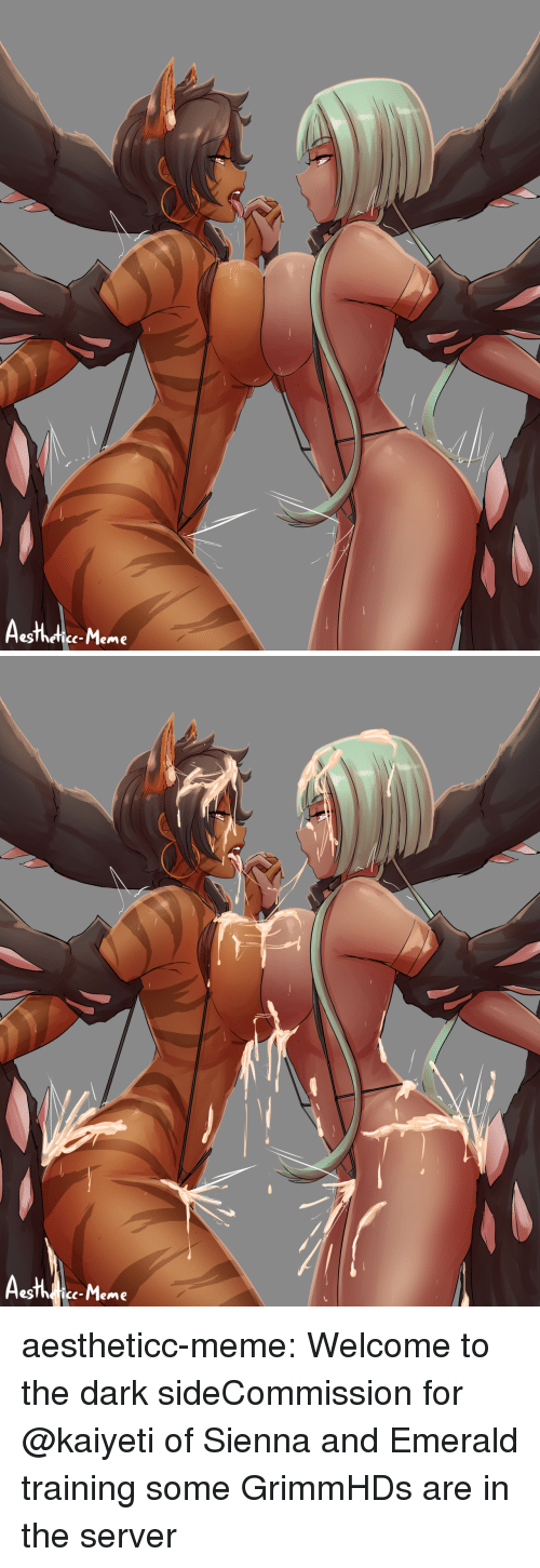 Gg, Meme, and Target: egThefice-Meme   c-Meme aestheticc-meme:  Welcome to the dark sideCommission for @kaiyeti of Sienna and Emerald training some GrimmHDs are in the server