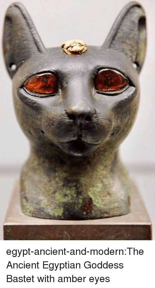 Tumblr, Blog, and Ancient: egypt-ancient-and-modern:The Ancient Egyptian Goddess Bastet with amber eyes