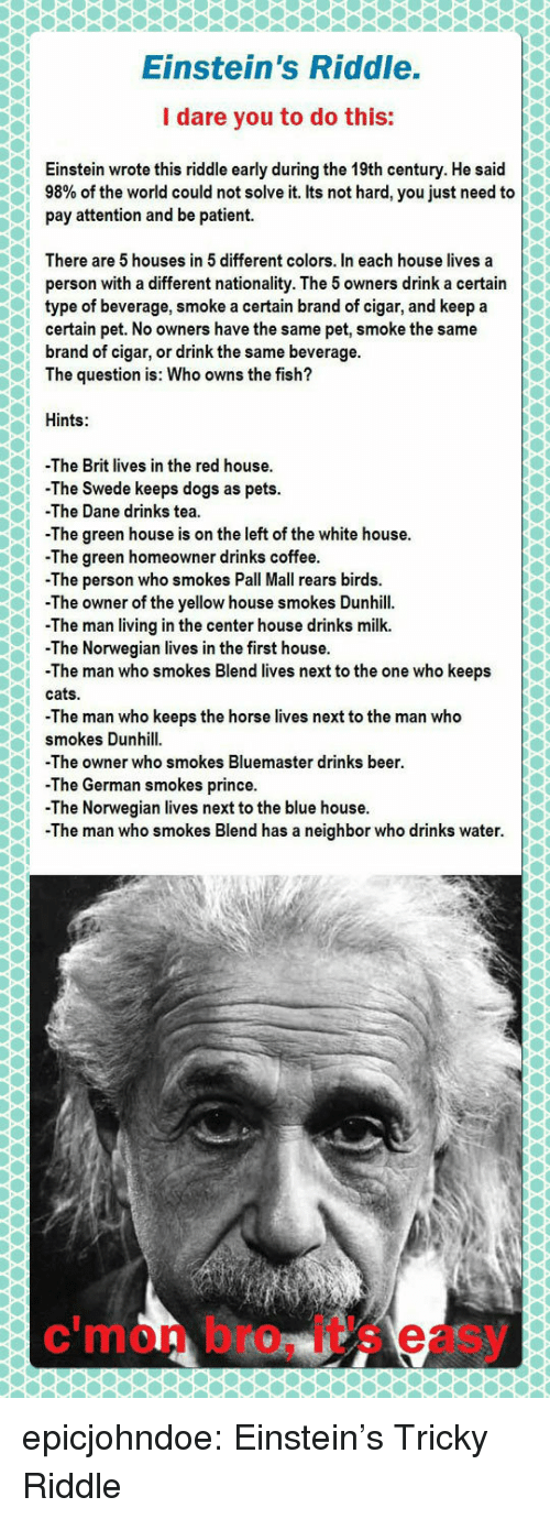 Nationality: Einstein's Riddle.  I dare you to do this:  Einstein wrote this riddle early during the 19th century. He said  98% of the world could not solve it. Its not hard, you just need to  pay attention and be patient.  There are 5 houses in 5 different colors. In each house lives a  person with a different nationality. The 5 owners drink a certain  type of beverage, smoke a certain brand of cigar, and keep a  certain pet. No owners have the same pet, smoke the same  brand of cigar, or drink the same beverage.  The question is: Who owns the fish?  Hints:  -The Brit lives in the red house  The Swede keeps dogs as pets.  -The Dane drinks tea  The green house is on the left of the white house.  -The green homeowner drinks coffee  -Th  e person who smokes Pall Mall rears birds.  The owner of the yellow house smokes Dunhill.  The man living in the center house drinks milk.  The Norwegian lives in the first house.  -The man who smokes Blend lives next to the one who keeps  cats.  -The man who keeps the horse lives next to the man who  smokes Dunhill  The owner who smokes Bluemaster drinks beer  -The German smokes prince.  -The Norwegian lives next to the blue house  The man who smokes Blend has a neighbor who drinks water.  c'mon bro, it's easy epicjohndoe:  Einstein's Tricky Riddle