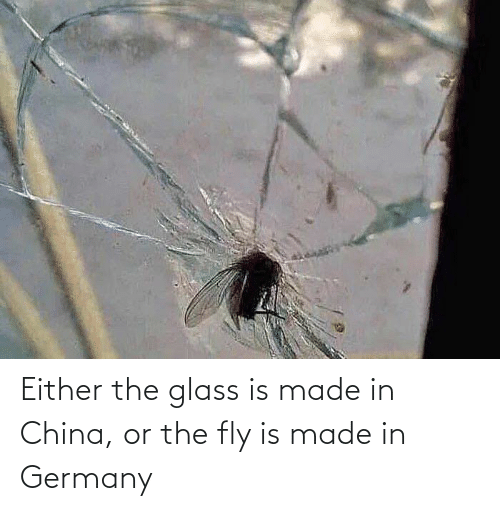 fly: Either the glass is made in China, or the fly is made in Germany