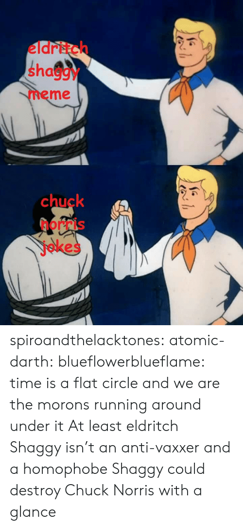 Chuck Norris, Meme, and Tumblr: eldritch  shaggy  meme  chuck  norris  jokes spiroandthelacktones: atomic-darth:  blueflowerblueflame: time is a flat circle and we are the morons running around under it  At least eldritch Shaggy isn't an anti-vaxxer and a homophobe   Shaggy could destroy Chuck Norris with a glance