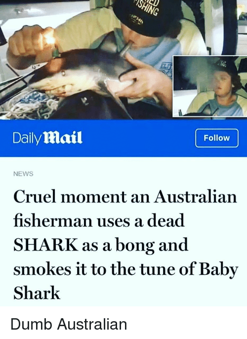 Bong: ELI  0  Daily Mail  Follow  NEWS  Cruel moment an Australian  fisherman uses a dead  SHARK as a bong and  smokes it to the tune of Baby  Shark Dumb Australian