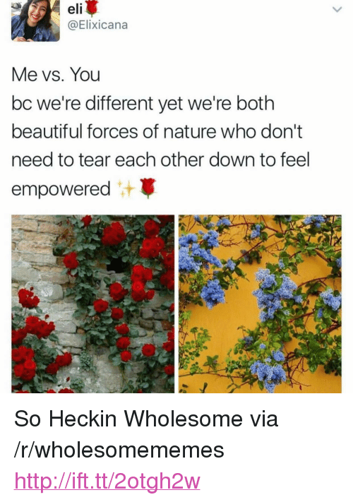 """Heckin: eli  @Elixicana  Me vs. You  bc we're different yet we're both  beautiful forces of nature who don't  need to tear each other down to feel  empowered <p>So Heckin Wholesome via /r/wholesomememes <a href=""""http://ift.tt/2otgh2w"""">http://ift.tt/2otgh2w</a></p>"""