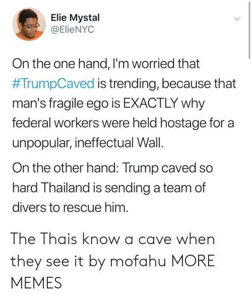 Dank, Memes, and Target: Elie Mystal  @ElieNYOC  On the one hand, l'm worried that  #TrumpCaved is trending, because that  man's fragile ego is EXACTLY why  federal workers were held hostage for a  unpopular, ineffectual Wall.  On the other hand: Trump caved so  hard Thailand is sending a team of  divers to rescue him The Thais know a cave when they see it by mofahu MORE MEMES