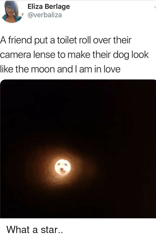 Love, Camera, and Moon: Eliza Berlage  @verbaliza  A friend put a toilet roll over their  camera lense to make their dog look  like the moon and I am in love What a star..