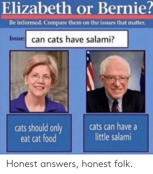 issue: Elizabeth or Bernie?  Be informed. Compare them on the issues that matter.  Issue can cats have salami?  cats can have  little salami  cats should only  eat cat food Honest answers, honest folk.