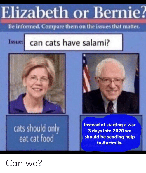Cats: Elizabeth or Bernie?  Be informed. Compare them on the issues that matter.  Issue: can cats have salami?  Instead of starting a war  3 days into 2020 we  should be sending help  cats should only  eat cat food  deserv  to Australia.  attention Can we?