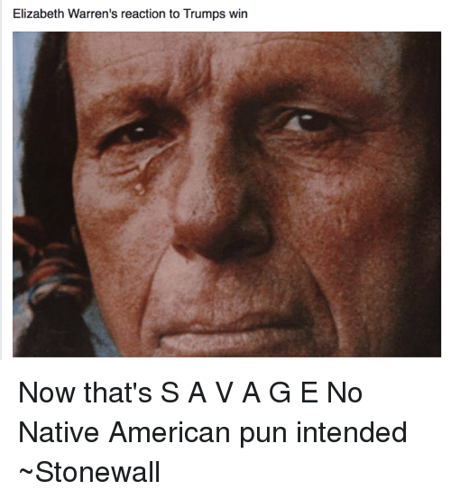 Native American Puns: Elizabeth Warren's reaction to Trumps win Now that's S A V A G E   No Native American pun intended  ~Stonewall