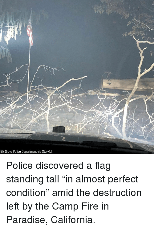 "Fire, Memes, and Paradise: Elk Grove Police Department via Storyful Police discovered a flag standing tall ""in almost perfect condition"" amid the destruction left by the Camp Fire in Paradise, California."