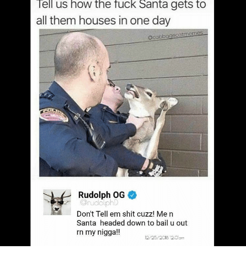 Memes, My Nigga, and Shit: ell us how the fuck Santa gets to  all them houses in one day  acabbagecatmemes  Rudolph OG  OrudolphD  Don't Tell em shit cuzz! Me n  Santa headed down to bail u out  rn my nigga!!  2/25/2018 2.0am