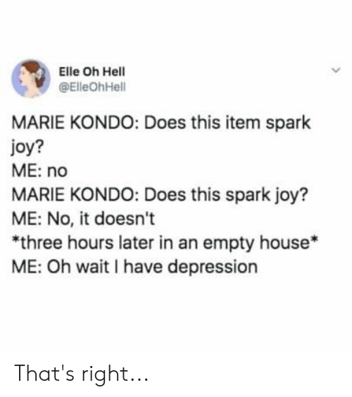 Depression, House, and Hell: Elle Oh Hell  @ElleOhHell  MARIE KONDO: Does this item spark  oy?  ME: no  MARIE KONDO: Does this spark joy?  ME: No, it doesn't  *three hours later in an empty house*  ME: Oh wait I have depression That's right...