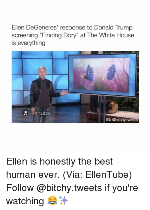 """Ellen Degenerate: Ellen DeGeneres' response to Donald Trump  screening """"Finding Dory"""" at The White House  is everything  tube  IG: @bitchy tweets Ellen is honestly the best human ever. (Via: EllenTube) Follow @bitchy.tweets if you're watching 😂✨"""