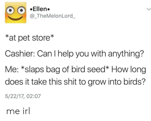 Ellen: Ellen.  @_TheMelonLord_  *at pet store*  Cashier: Can I help you with anything?  Me: *slaps bag of bird seed* How long  does it take this shit to grow into birds?  5/22/17, 02:07 me irl