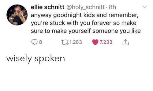 goodnight: ellie schnitt @holy_schnitt 8h  anyway goodnight kids and remember,  you're stuck with you forever so make  sure to make yourself someone you like  t1.283  7.233 wisely spoken