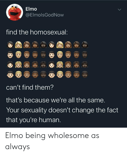 Elmo: Elmo  @ElmolsGodNow  find the homosexual:  can't find them?  that's because we're all the same.  Your sexuality doesn't change the fact  that you're human. Elmo being wholesome as always