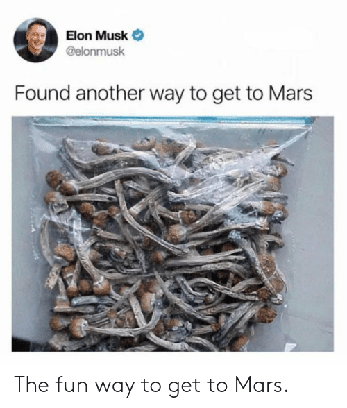 Mars, Elon Musk, and Another: Elon Musk Ф  @elonmusk  Found another way to get to Mars The fun way to get to Mars.