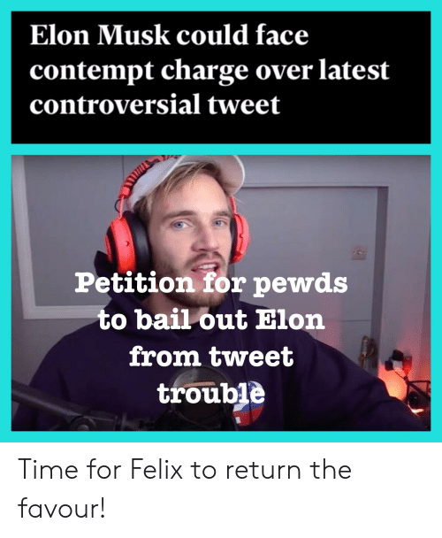 Bailed Out: Elon Musk could face  contempt charge over latest  controversial tweet  Petition for pewds  to bail out Elon  from tweet  trouble Time for Felix to return the favour!