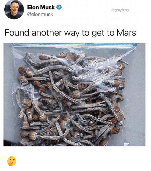 Memes, Mars, and 🤖: Elon Musk  @elonmusk  drgrayfang  Found another way to get to Mars 🤔