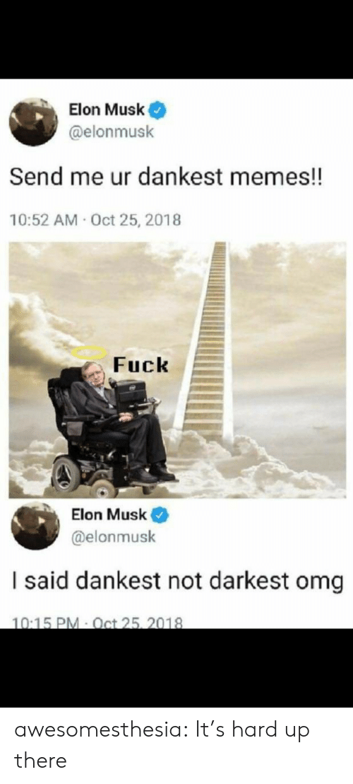 Memes, Omg, and Tumblr: Elon Musk  @elonmusk  Send me ur dankest memes!!  10:52 AM Oct 25, 2018  Fuck  Elon Musk  @elonmusk  I said dankest not darkest omg  10:15 PM Oct 25, 2018 awesomesthesia:  It's hard up there