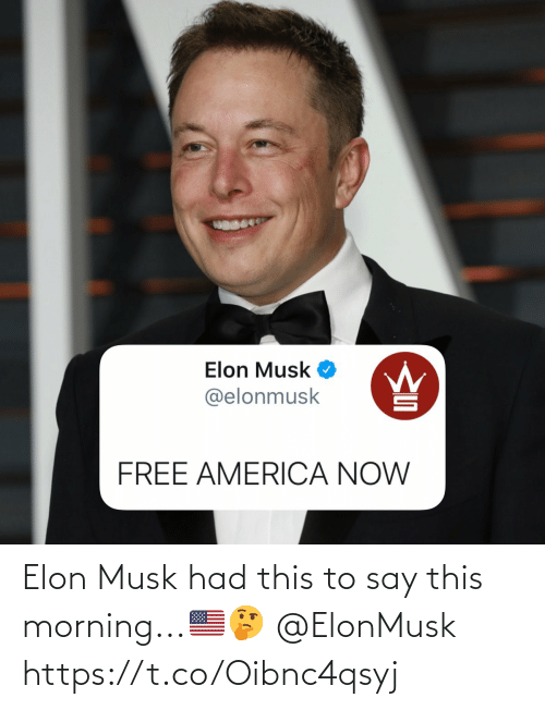 morning: Elon Musk had this to say this morning...🇺🇸🤔 @ElonMusk https://t.co/Oibnc4qsyj
