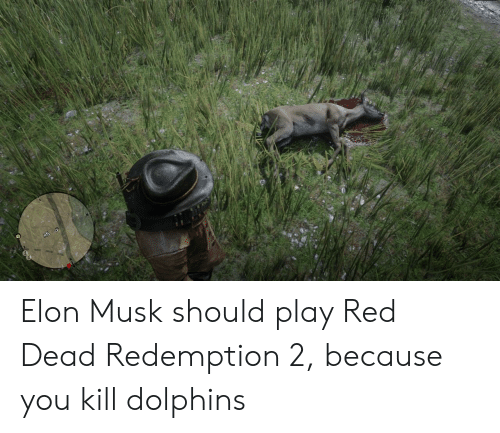 Dolphins, Red Dead Redemption, and Elon Musk: Elon Musk should play Red Dead Redemption 2, because you kill dolphins