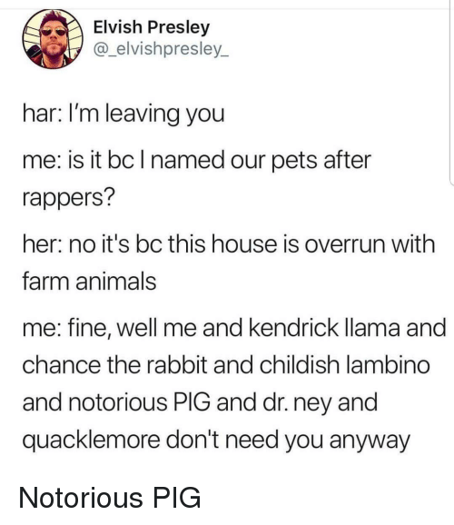 Animals, Pets, and House: Elvish Presley  @_elvishpresley_  har: I'm leaving you  me: is it bc l named our pets after  rappers?  her: no it's bc this house is overrun with  farm animals  me: fine, well me and kendrick llama and  chance the rabbit and childish lambino  and notorious PIG and dr. ney and  quacklemore don't need you anyway Notorious PIG