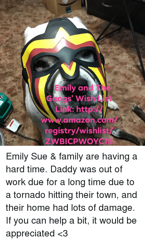 Amazon, Family, and Memes: Emily and The  3  Gangs' Wish List  Link: http:/  www.amazon.com  registry/wishlist  ZWBICPWOYC Emily Sue & family are having a hard time.  Daddy was out of work due  for a long time due to a tornado hitting their town, and their home had lots of damage.  If you can help a bit, it would be appreciated <3