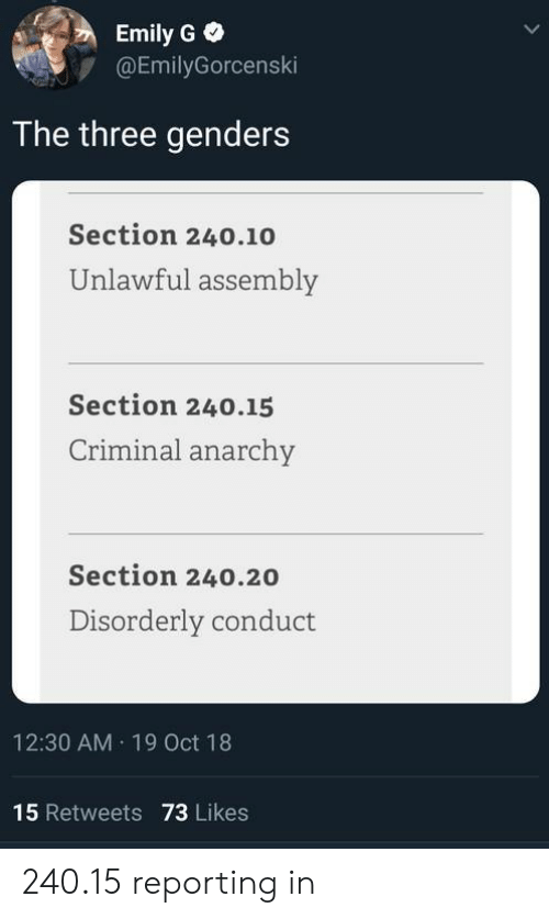 Anarchy, Criminal, and Three: Emily G  @EmilyGorcenski  The three genders  Section 240.10  Unlawful assembly  Section 240.15  Criminal anarchy  Section 240.20  Disorderly conduct  12:30 AM 19 Oct 18  15 Retweets 73 Likes 240.15 reporting in