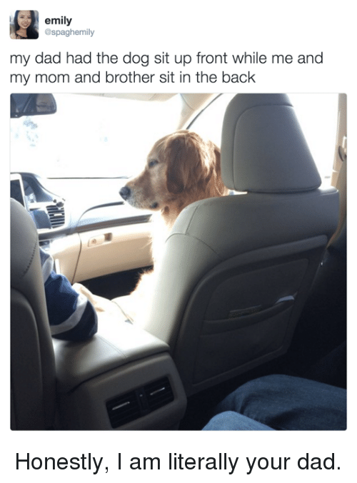 sit up: emily  @spaghemily  my dad had the dog sit up front while me and  my mom and brother sit in the back Honestly, I am literally your dad.