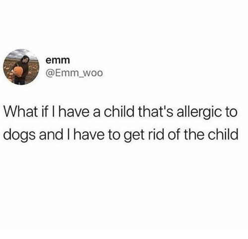 Dank, Dogs, and 🤖: emm  @Emm_woo  What if I have a child that's allergic to  dogs and I have to get rid of the child