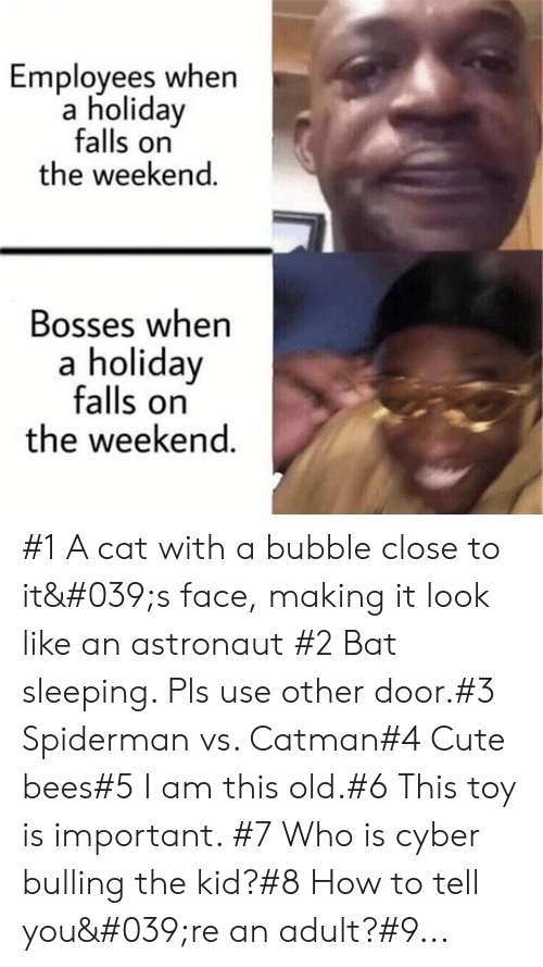 Bubble: Employees when  a holiday  falls on  the weekend.  Bosses when  a holiday  falls on  the weekend. #1 A cat with a bubble close to it's face, making it look like an astronaut #2 Bat sleeping. Pls use other door.#3 Spiderman vs. Catman#4 Cute bees#5 I am this old.#6 This toy is important. #7 Who is cyber bulling the kid?#8 How to tell you're an adult?#9...
