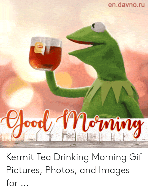 Gif Pictures: en.davno.ru  AA  efoody Mny Kermit Tea Drinking Morning Gif Pictures, Photos, and Images for ...