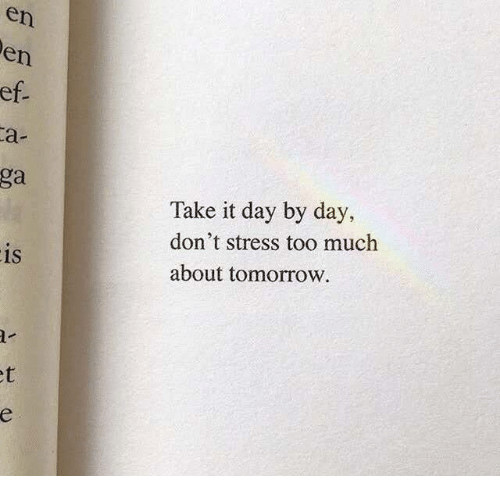 day by day: en  en  ga  Take it day by day,  don't stress too much  about tomorrow  1S