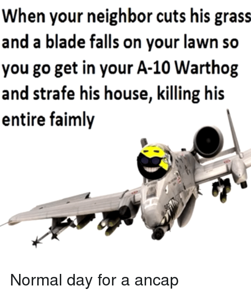 Blade, House, and Anarchy: en your neighbor cuts his grass  and a blade falls on vour lawn so  you go get in your A-10 Warthog  and strafe his house, killing his  entire faimly