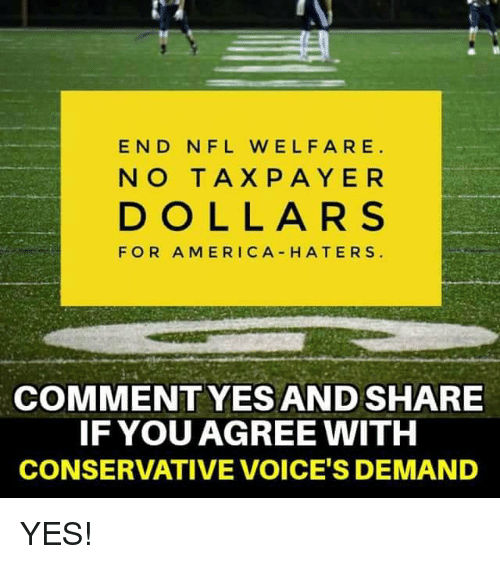 America, Memes, and Nfl: END NFL W ELFARE  NO TAX P AYER  DOLLARS  FOR AMERICA HATERS  COMMENT YESAND SHARE  IF YOU AGREE WITH  CONSERVATIVE VOICE'S DEMAND YES!