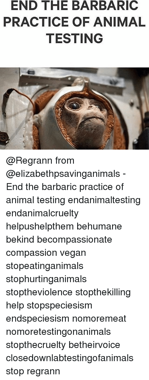 animal testing barbaric scientific practice or Cosmetic and household products testing on unethical, and barbaric non-animal testing guidelines are published each year by the organization for.
