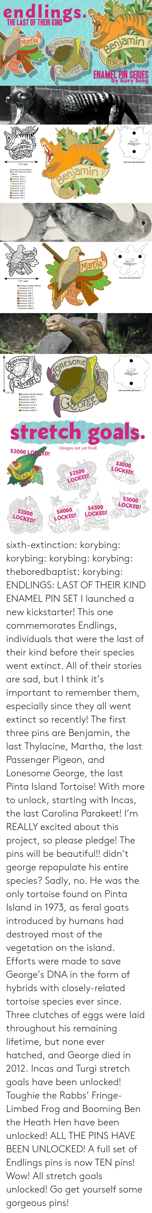 "pledge: endlings  THE LAST OF THEIR KIND  Marta  AOnesone  Benjamin  1936  Gesge  ENAMEL PIN SERIES  by kory bing   plesiosaur bones  KORYG  Beniamin  back and clasp placement  1.75"" wide  Antique Bronze Metal  recessed Antique Bronze Metal  White  Pantone 2253 C  Benjamin  Pantone 555 C  Pantone 7412 C  Pantone 461C  Pantone 617 C  Pantone 1375 C  1936  Pantone 360 C  Pantone 160 C  Pantone 484 C  Pantone 173 C   Martha  Martha  plesiosaur bones  ORYG  back and clasp placement  1.75"" wide  Antique Copper Metal  Pantone 475 C  1911  Pantone 415 C  Pantone 160 C  Pantone 486 C  