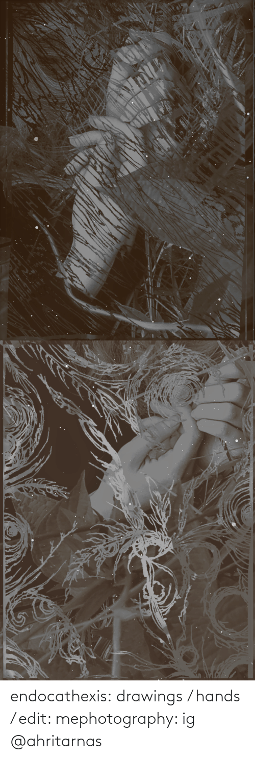 Photography: endocathexis:  drawings / hands / edit: mephotography: ig @ahritarnas